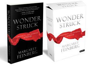 Wonderstruck Cover Art